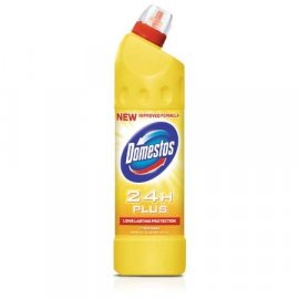 Domestos 24H Plus Citrus 1250ml