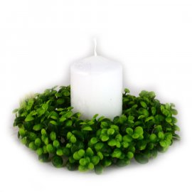 Wianek zielony bukszpan 17 cm Wielkanoc