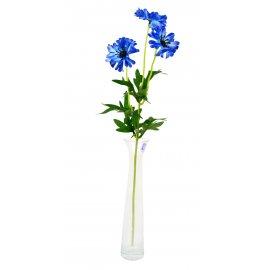 Gałązka Kwiaty Chabry