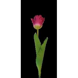 Pojedynczy kwiat tulipana 60cm różowy
